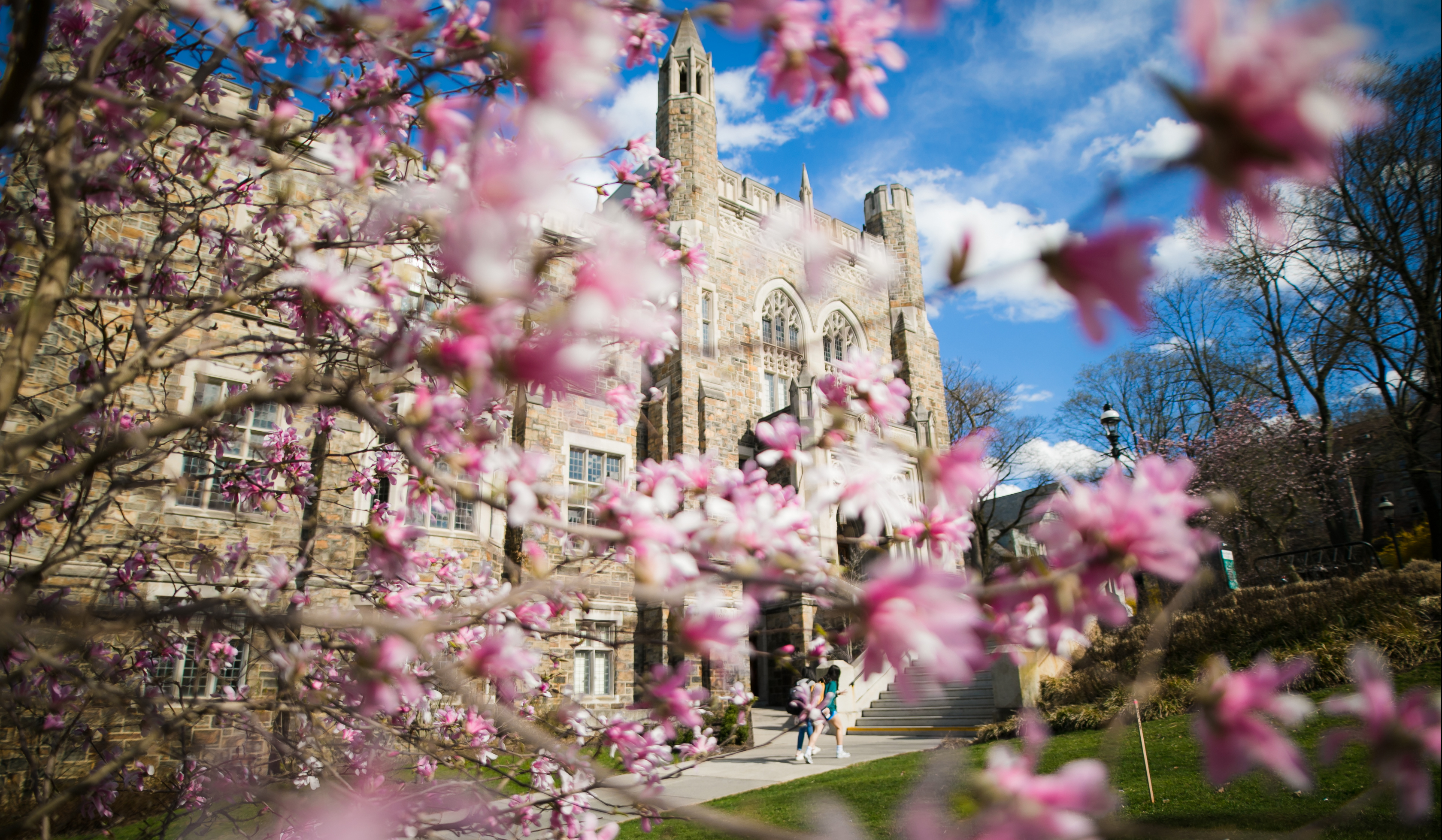 The beautiful Lehigh campus in spring