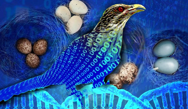 Illustration of a bird, eggs and a strand of DNA