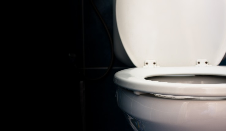 image of a toilet seat