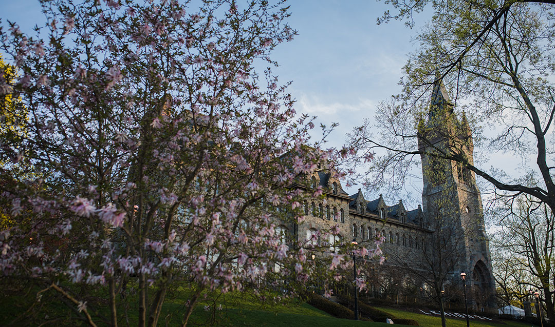 Spring flowers in front of Lehigh University's University Center