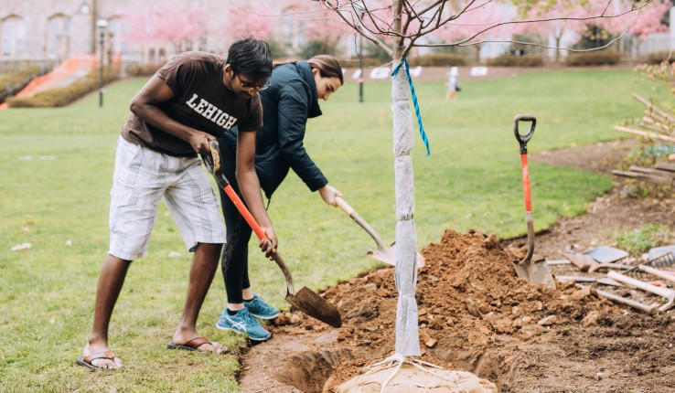 Students on campus planting a tree