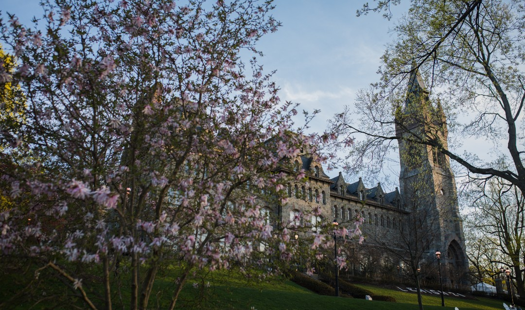 spring beauty on campus
